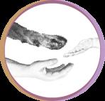 E-mirrors Logo